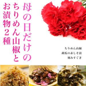 ちりめん山椒と漬物2種